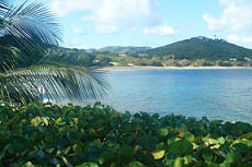 St. Croix beach front vacation villas